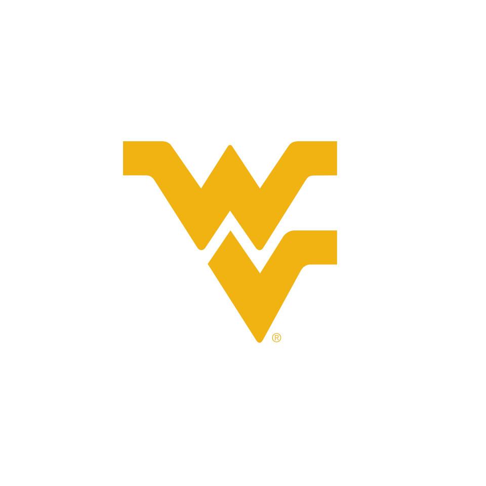 gold Flying WV logo